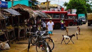 Sri Lanka Travel Clip - Arugam Bay, Ella, Adam's Peak