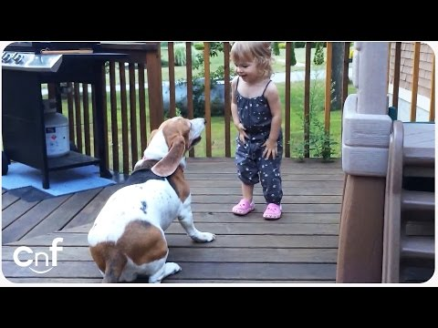 Little Girl Charlotte Dancing With Her Basset Hound Dog Zoe