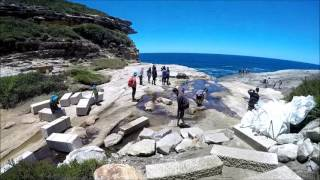 Royal National Park Bundeena Coastal Track. NSW Australia