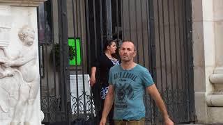 Street Singer In Vienna