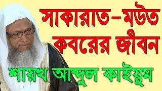 সাকারাত, মউত এবং কবর | Life After Death | Shaykh Abdul Qayum