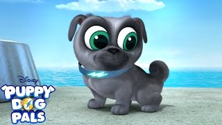 This is How You Jump | Music Video | Puppy Dog Pals | Disney Junior