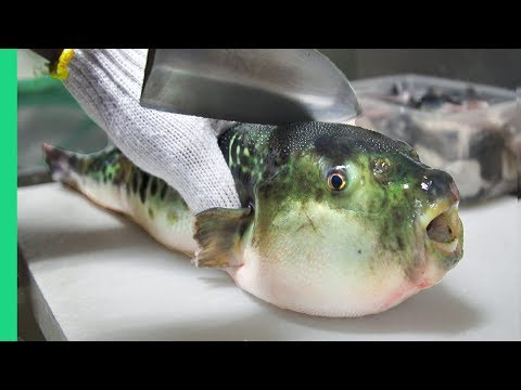 Eating Japan s POISONOUS PufferFish ALMOST DIED Ambulance