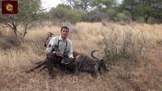 CAZA CON ARCO EN AFRICA 1