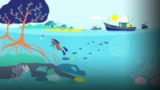 An ingenious proposal for scaling up marine protection | Mark Tercek