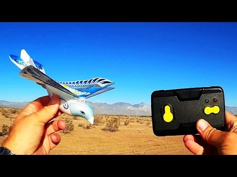 Taibo E Bird Pigeon Flapping Wing Flight Test Review