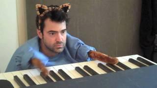 Keyboard Cat Redux