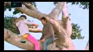Bangla Valentines Day Natok 2015   Monkey Bizness   Comedy & Romantic 2