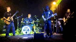 Tiki Bar,  Live Antell and Lizard Fish 10-26-2012