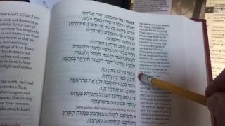 14 Ahava Raba