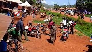Bomoa bomoa kasulu kigoma tanzania