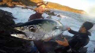 Fishing for Northern Bluefin Tuna