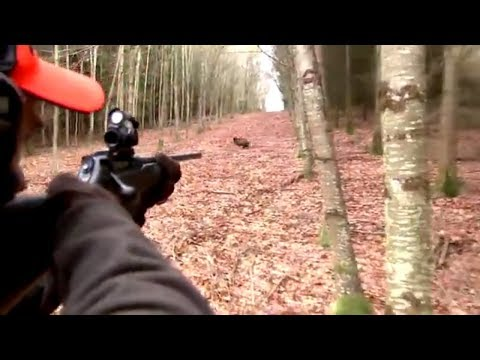 Xxx Mp4 Best Of Wild Boar Hunting Top Kill Shots Compilation Ultimate Hunting 3gp Sex