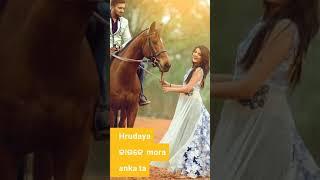 Odia full screen status video Bazigar tu mo Bazigar 🌹❤️💟💘