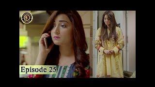 Rasm-e-Duniya - Episode 25  - 24th July 2017 - Armeena Khan & Sami khan Top Pakistani Dramas