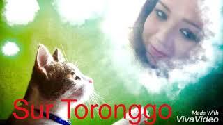 Agar Tum Mil Jao Zamana Chod Denge Hum ...