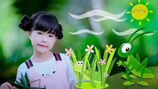Con Cào Cào ♪ Thần Đồng Âm Nhạc Việt Nam Bé MAI VY
