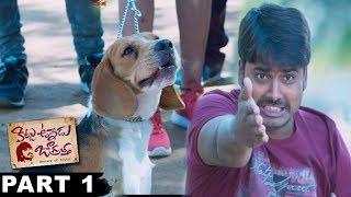 Kittu Unnadu Jagratha Full Movie Part 1 || Raj Tarun, Anu Emmanuel