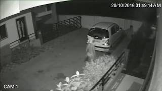 3 Thief see in CCTV footage