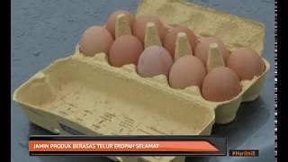 Jamin produk berasas telur Eropah selamat