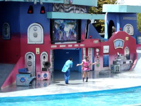 Show de Lobos Marinos San Clemente del Tuyú