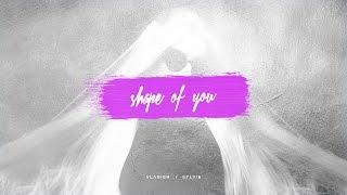 Ed Sheeran - Shape Of You (Vladish & Sylvie Cover)