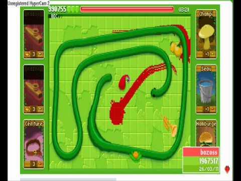 record mondial snake