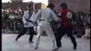 Very rare fight  kung fu vs taekwondo (Master Ehsan Shafiq)