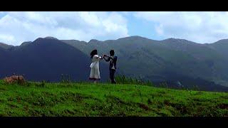 sarinodu movie hd songs