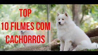 10 filmes com Cães  - filmes com cachorros que você precisa ver - Filmes de Cachorros