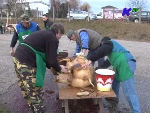 Hagyományteremtő disznóvágás Kürtön 2011. december 30.
