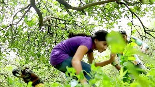 Girls And Boys In Forest || Latest Movie Scenes || 2018