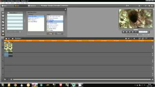 How To Make a Reverse Motion Effect - Pinnacle Studio 15 Ultimate Collection HD