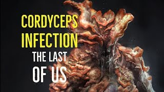 Cordyceps Infection (The Last of Us Explored)