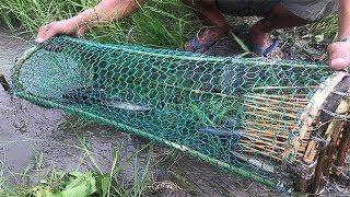 Creative Man Make Survival Fish Trap - How To Make Survival Fish Trap To Catch A Lot Of Fishes