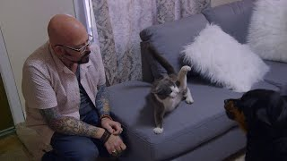 This Dog And Cat Are Acting Like Predator And Prey | Cat vs. Dog