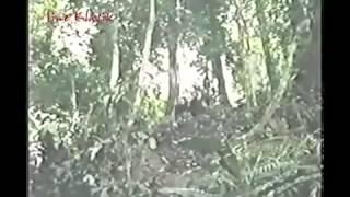 Daniel Pasia  PASASABUGIN KO ANG MUNDO MO 1998