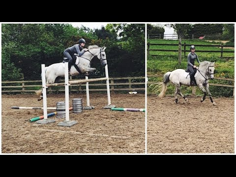 Xxx Mp4 JUMPING 1M30 ON MY ROOMMATES HORSE 3gp Sex