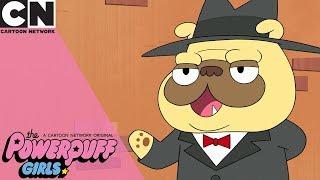 The Powerpuff Girls | Entering the Dog Mafia | Cartoon Network
