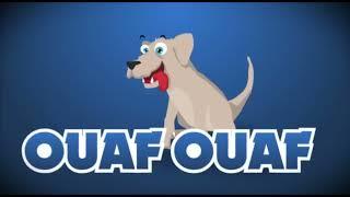 Le Poussin Piou