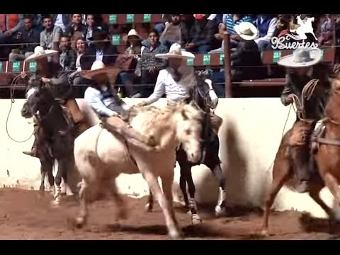 Los mejores 5 Jineteos de Yegua – Nacional Charro Querétaro 2015