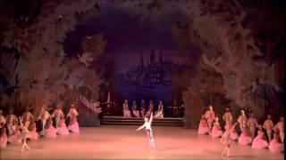 Cascanueces - Danza de las flautas
