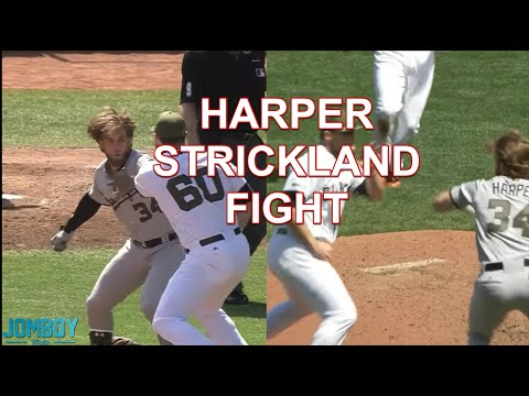 Bryce Harper and Hunter Strickland throw punches at each other a breakdown