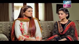 Haal-e-Dil - Episode 183 | Top Pakistani Dramas
