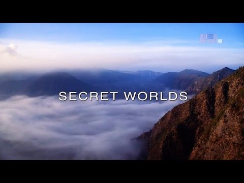 Wildest Islands of Indonesia - Series 1 - Episode 4 of 5: Secret Worlds