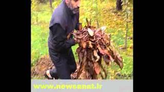 دستگاه خرد کن چوب سه کارهchipper