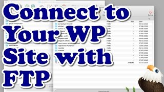 How to connect to your WordPress Website with FTP