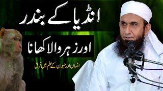 """India Ke Bandar Aur Zehrila Khana"" Maulana Tariq Jameel Latest Bayan 28 October 2018"