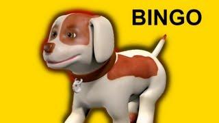 BINGO   Family Sing Along - Muffin Songs
