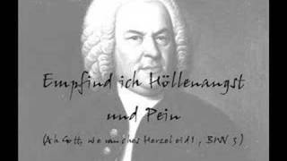 J.S. Bach - cantata BWV 3 - 3 - aria bass